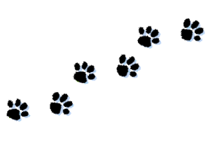 Pawprint clipart cat. Paw print claw for