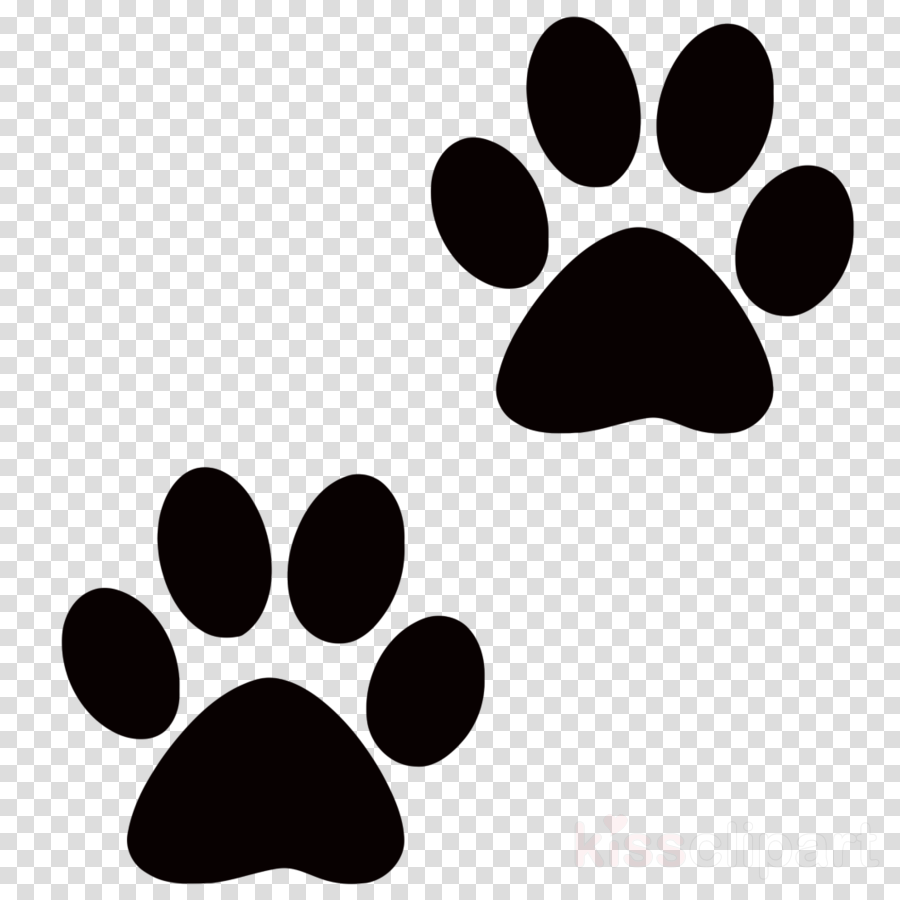 Hd cat paw print. Pawprint clipart high resolution