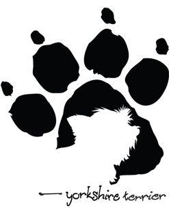 Pawprint clipart yorkie. Yorkshire terrier yorkies dog