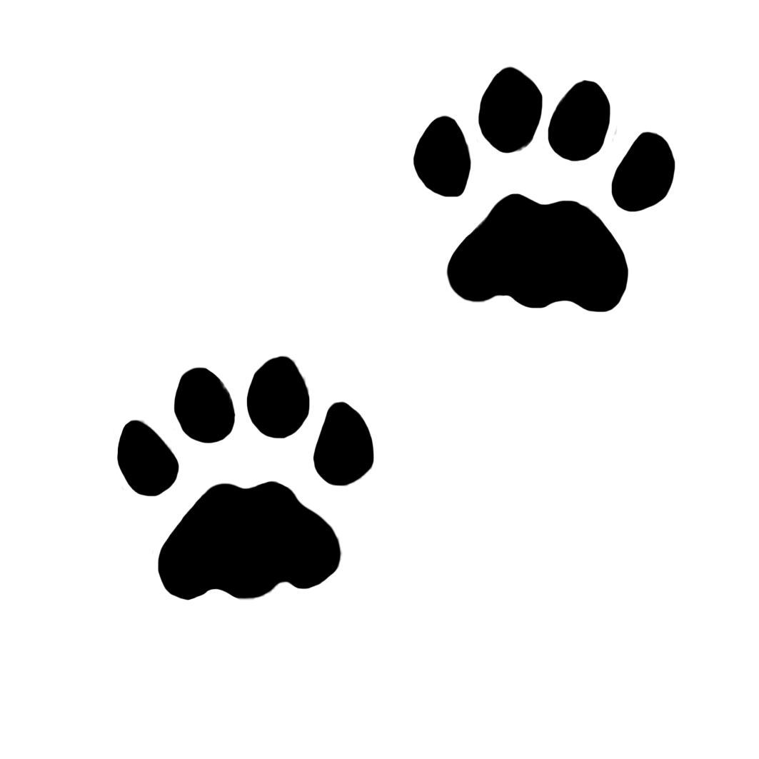 Paw prints cat paws. Horseshoe clipart tracks