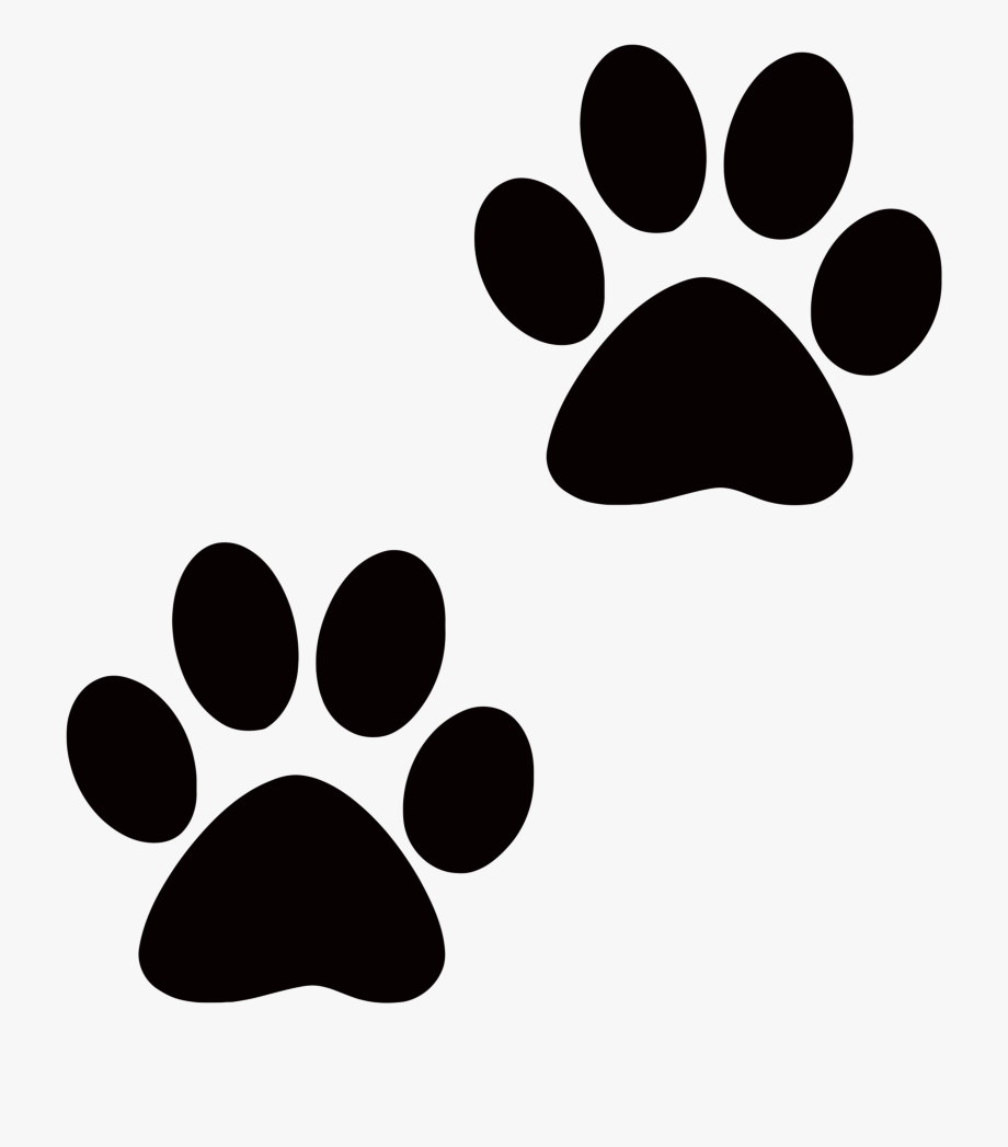 Paws clipart. Tiger cat paw print