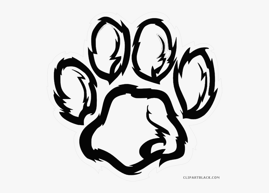 Wildcat clipart bear claw. Freeuse download paw black