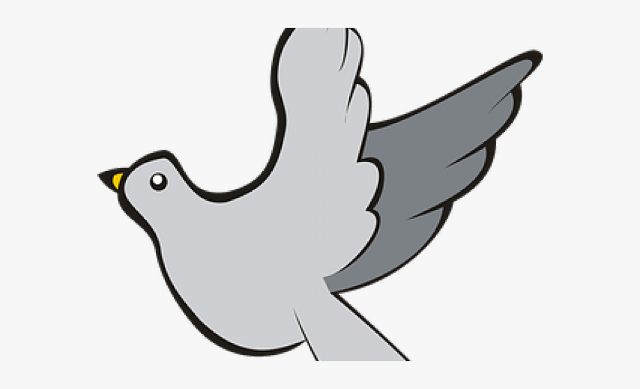 Domestic free . Pigeon clipart burung