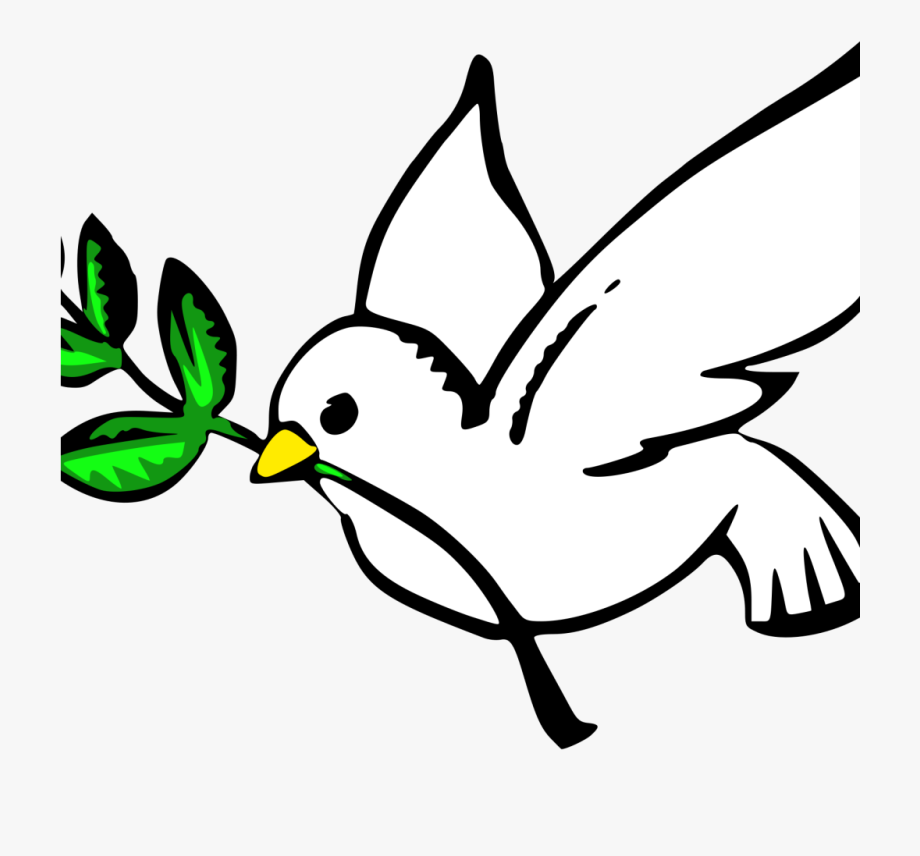 Dove vigil and prevention. Peace clipart peace conflict