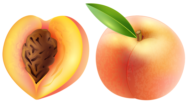 Peach clipart. Transparent png clip art