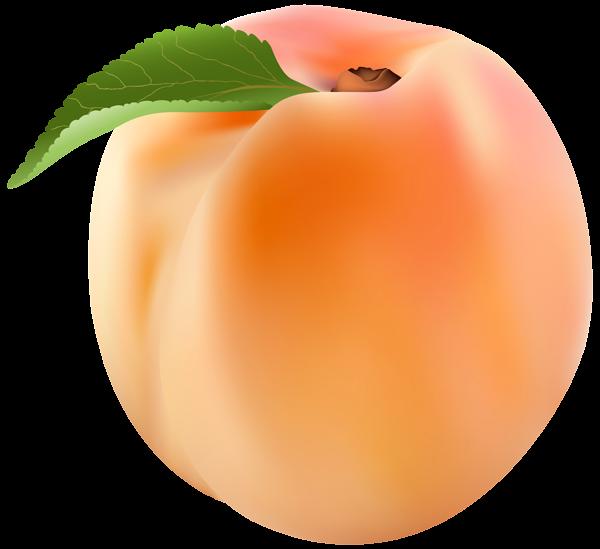 Png clip art image. Clipart fruit peach