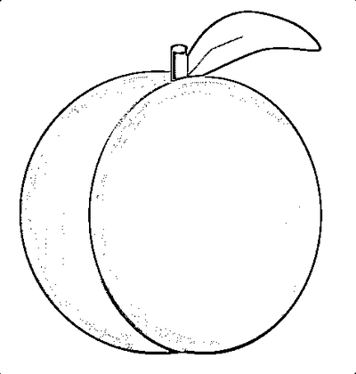 Peach clipart black and white. Free download best