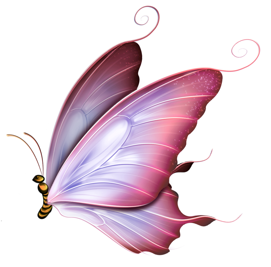 Png pinterest and diy. Peach clipart butterfly
