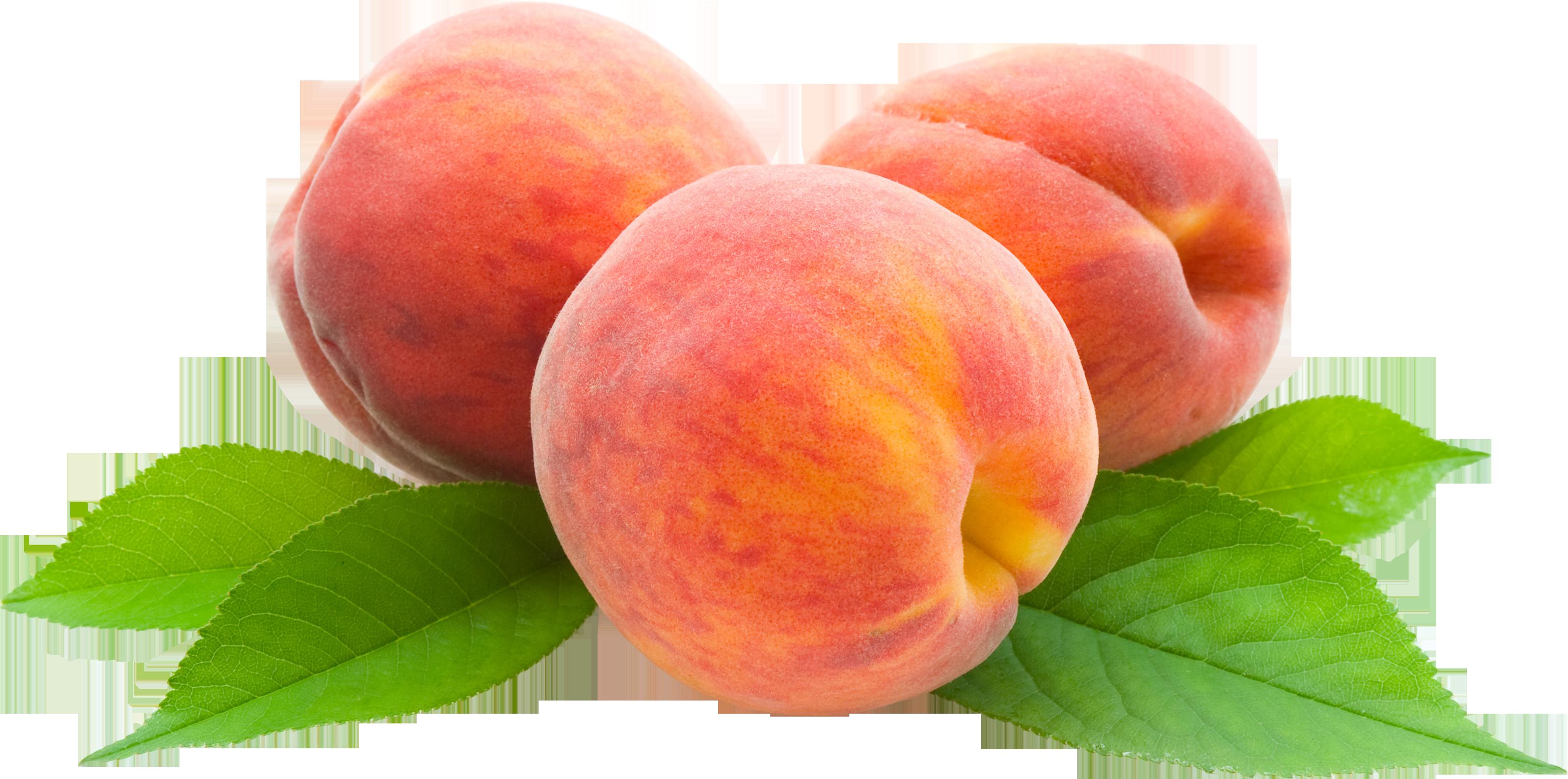 Peach clipart georgia peach. Hd png transparent images