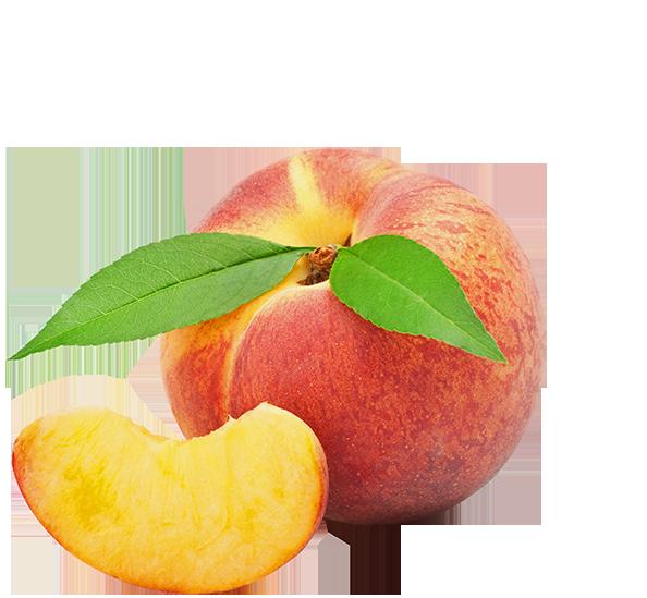 Peaches group peters orchards. Peach clipart georgia peach