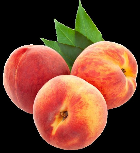 Peach clipart georgia peach. Gallery free pictures