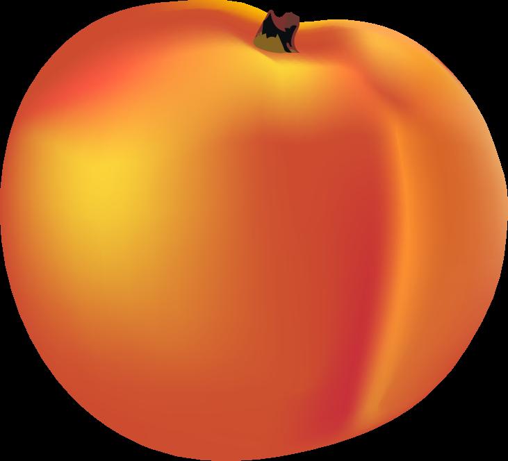 Peach clipart orange apple. Buncee my favorite part