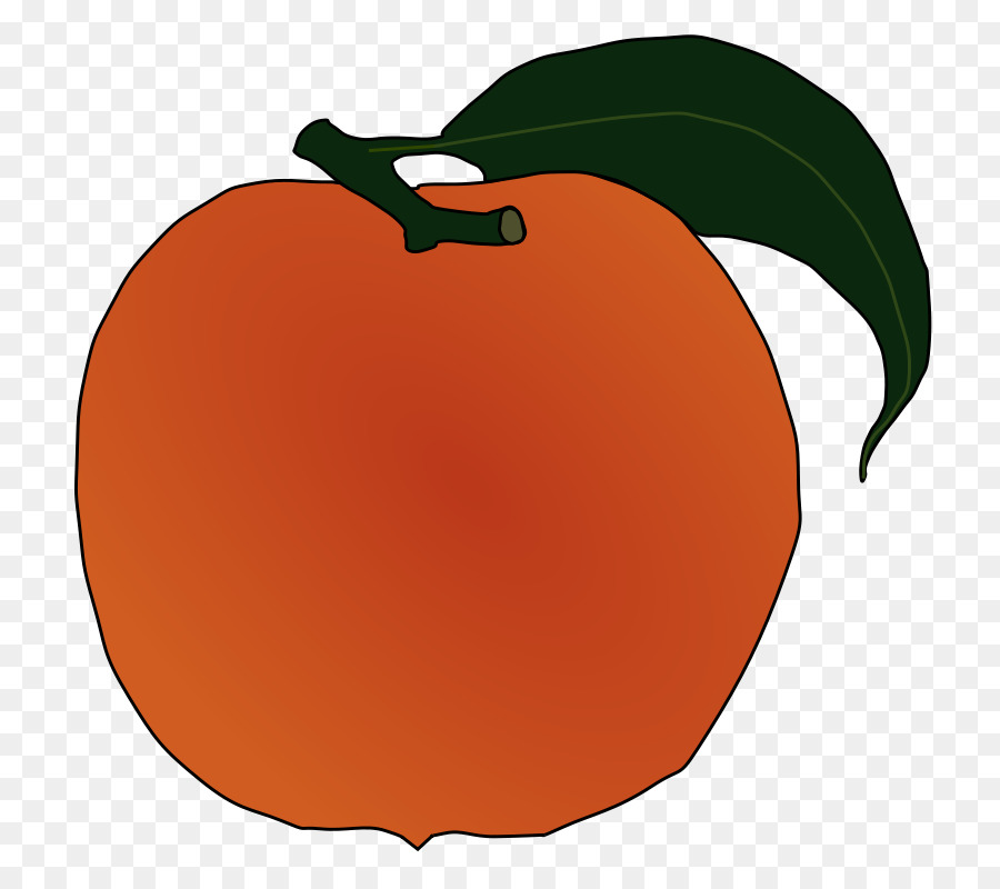 Peach clipart orange apple. Leaf fruit food transparent