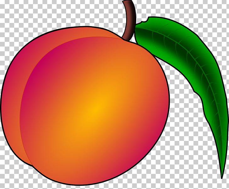 Peach clipart orange apple. Free content png circle