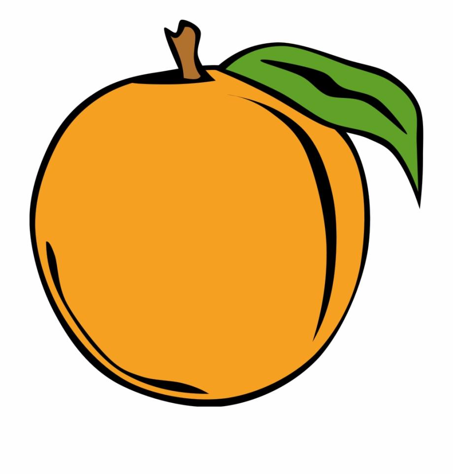 Peach clipart orange food. Fruit png images clip