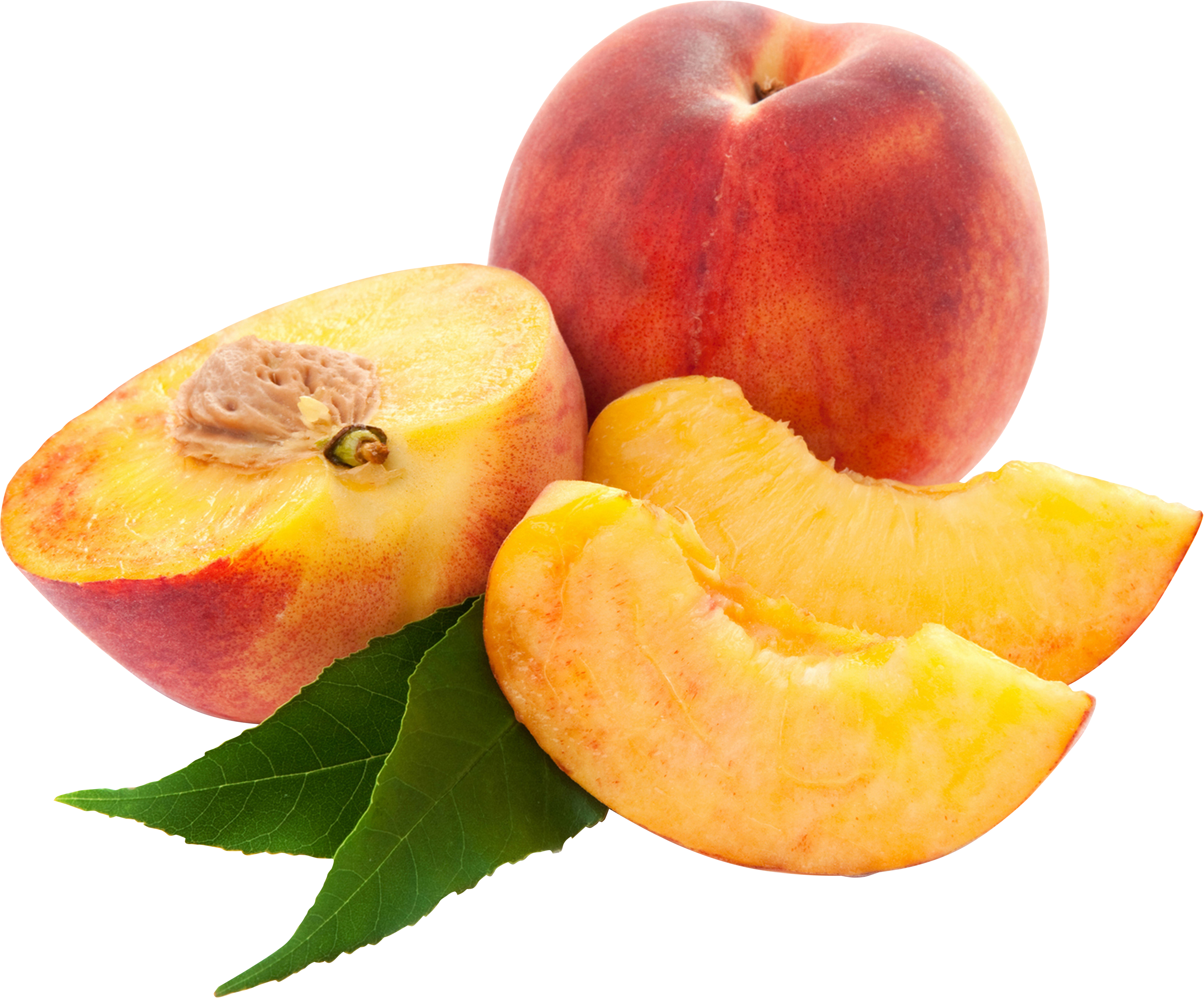 Peaches clipart peach tree. Fifty one isolated stock