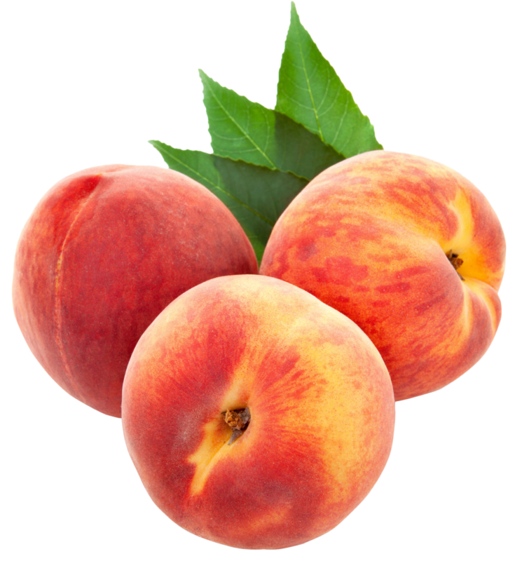 Pear clipart peach. New images photos free