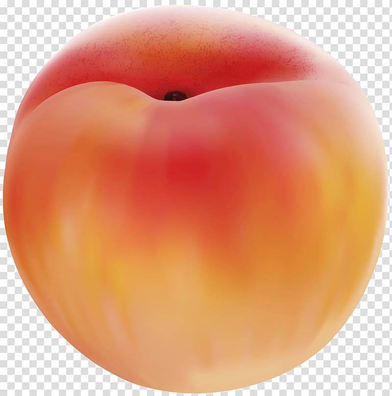 Peach clipart peach fruit. Transparent background png