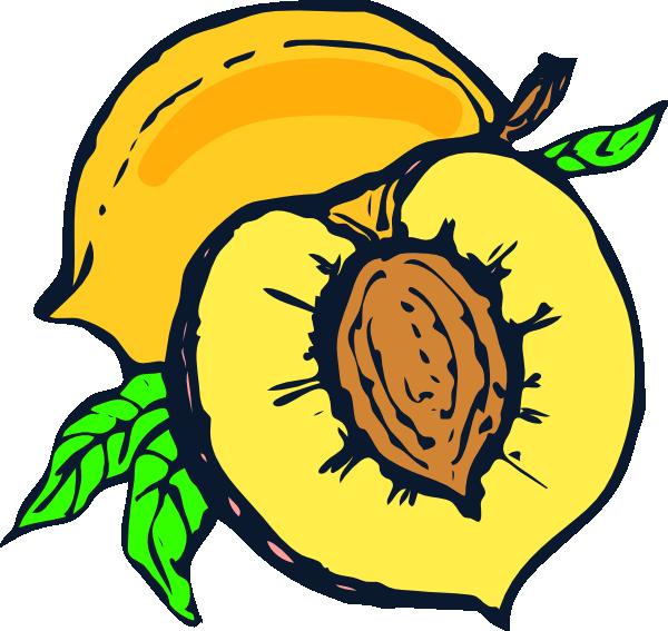 Clip art at clker. Peaches clipart peach tree