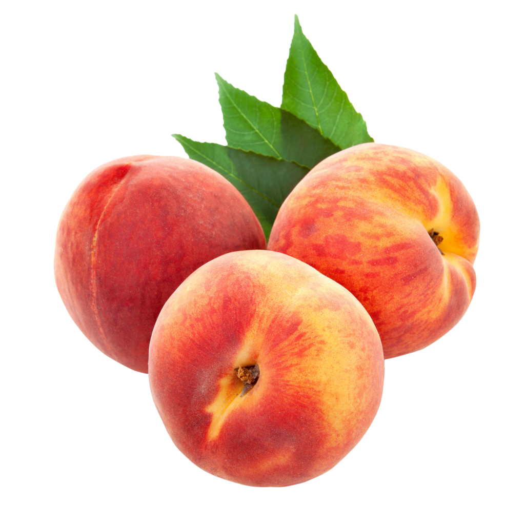 Peaches clipart ripe fruit.  png album arana