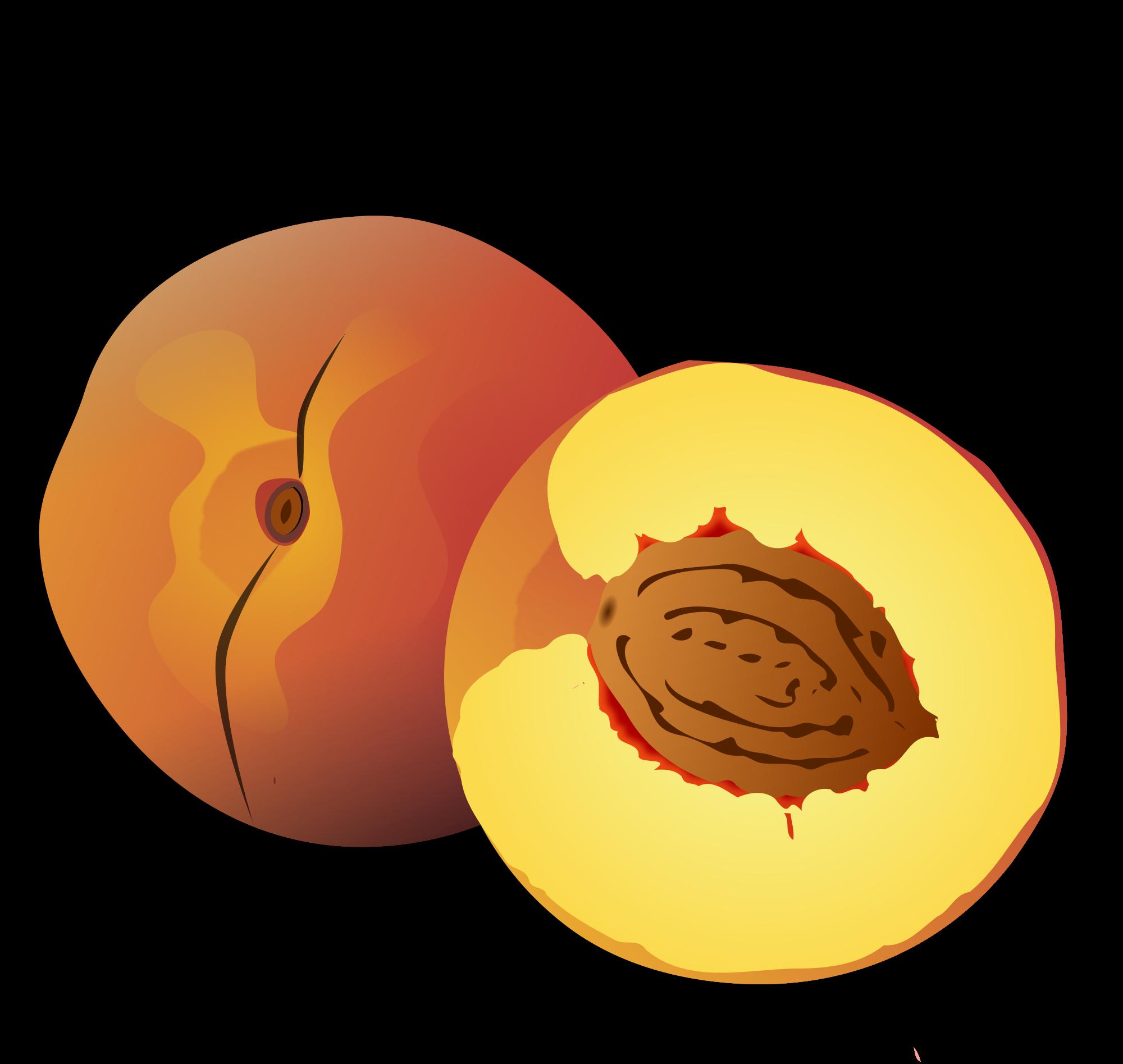 File wikimedia commons open. Peach clipart svg