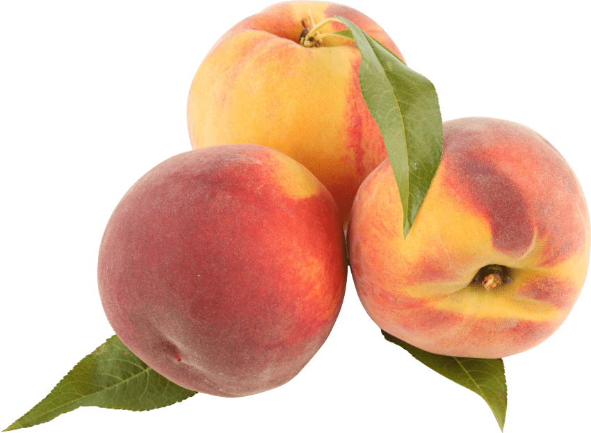 Peaches png free images. Peach clipart transparent background peach