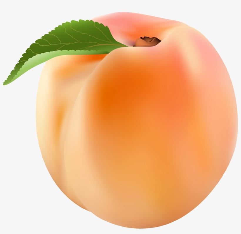 Png clip art image. Peach clipart transparent background peach