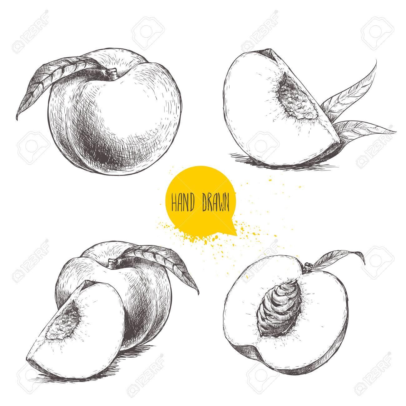 X free clip art. Peach clipart vintage peach