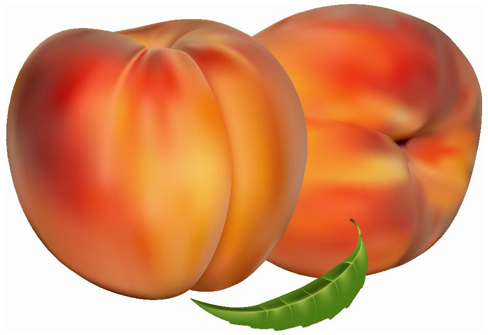 Clipart fruit peach. Peaches png best web
