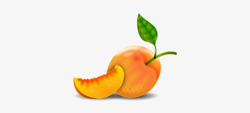 Peaches clipart durazno. Peach damascus tree fruit