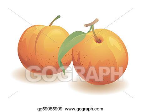 Peaches clipart peach atlanta. Vector art fruit drawing