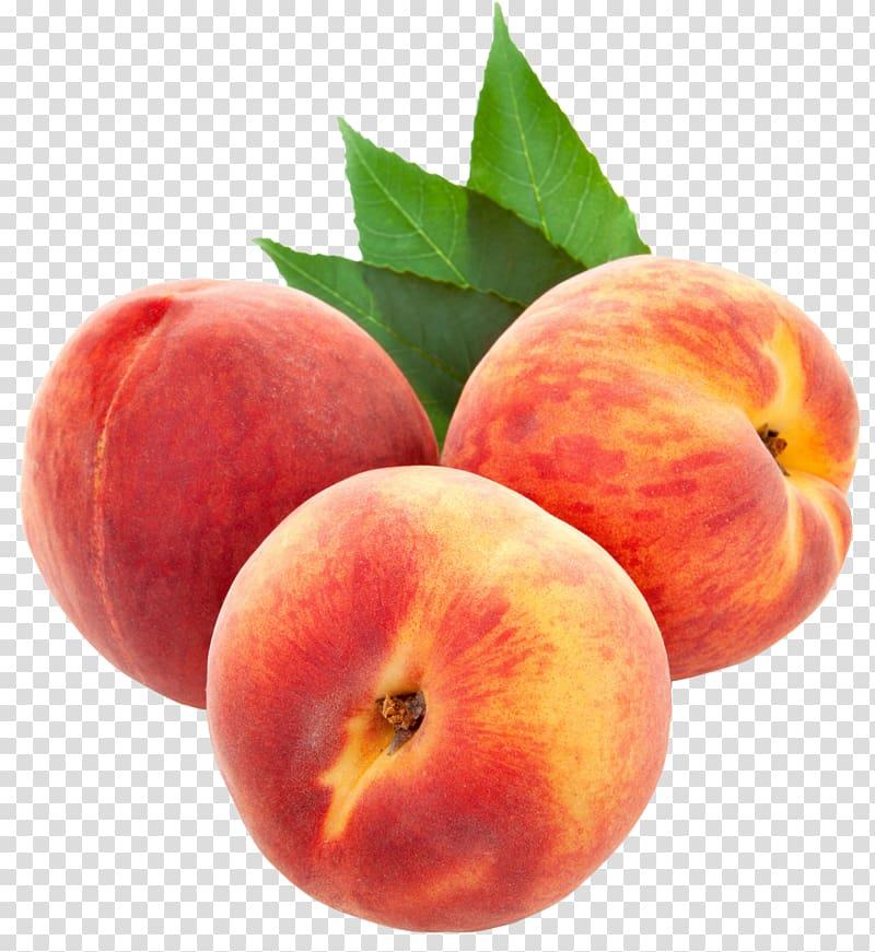 Peach clipart ripe fruit. Large peaches three apples