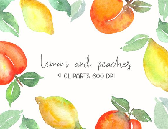 Peaches clipart ripe fruit. Set of watercolor s
