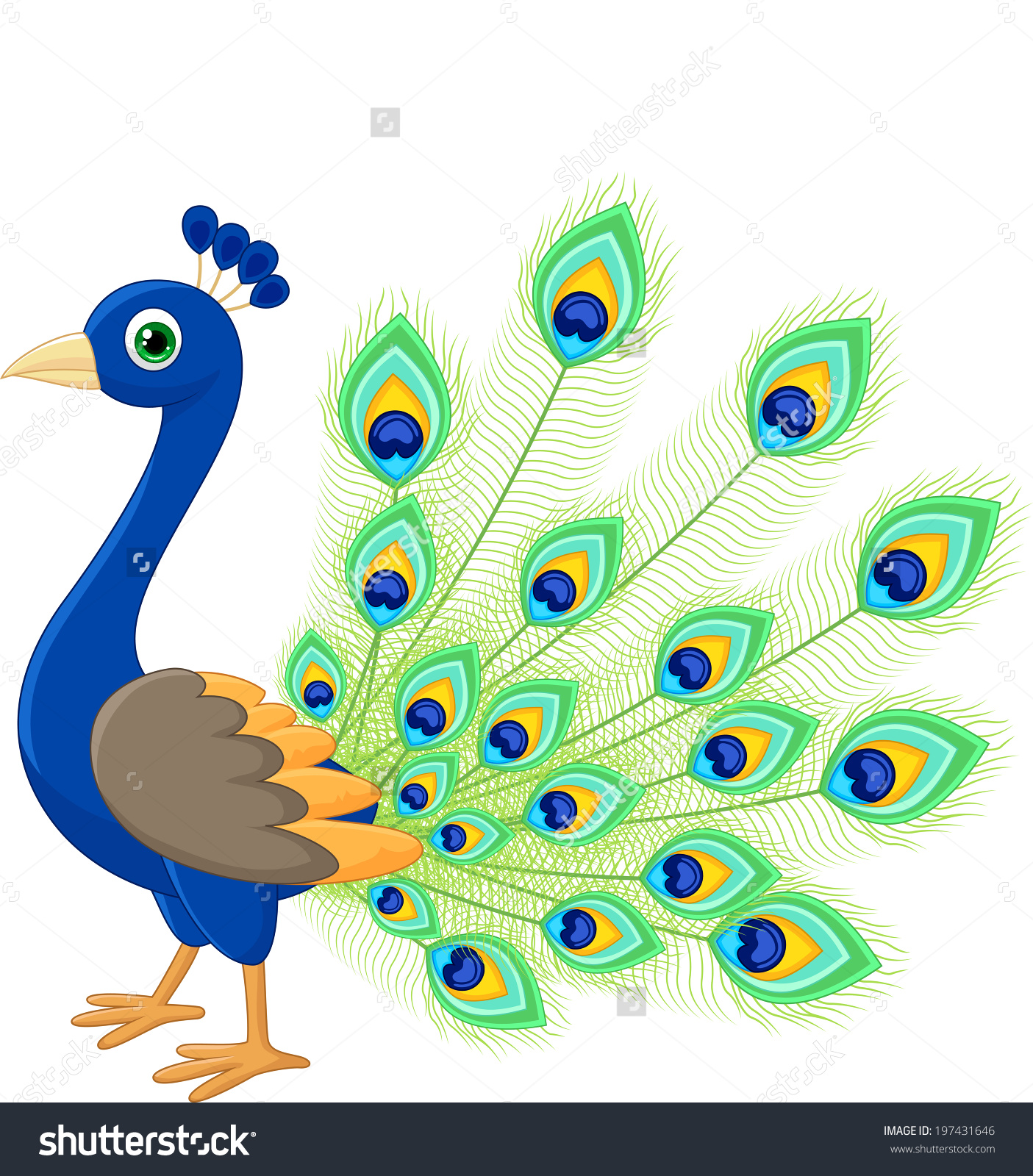Feather at getdrawings com. Peacock clipart
