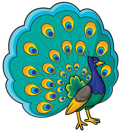 At getdrawings com free. Peacock clipart
