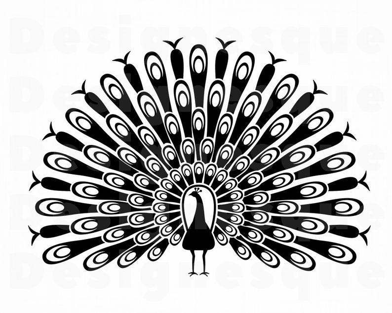 Svg peafowl files for. Peacock clipart