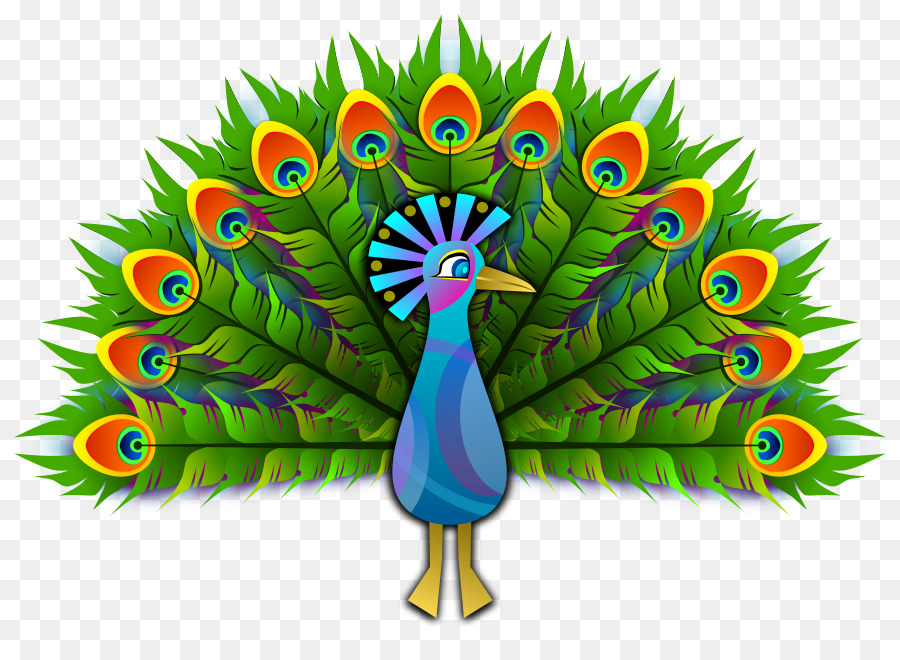 Peacock clipart. Peafowl bird drawing clip
