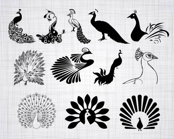 Svg bundle cut files. Peacock clipart
