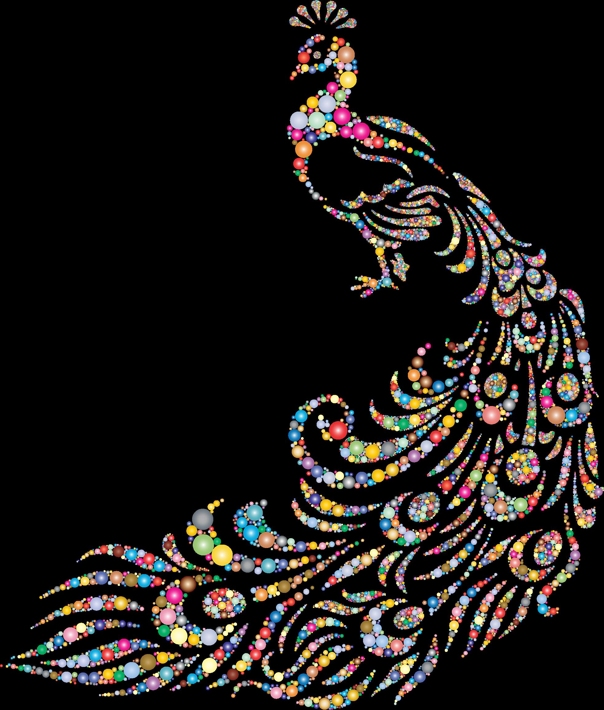 peacock clipart colourful peacock
