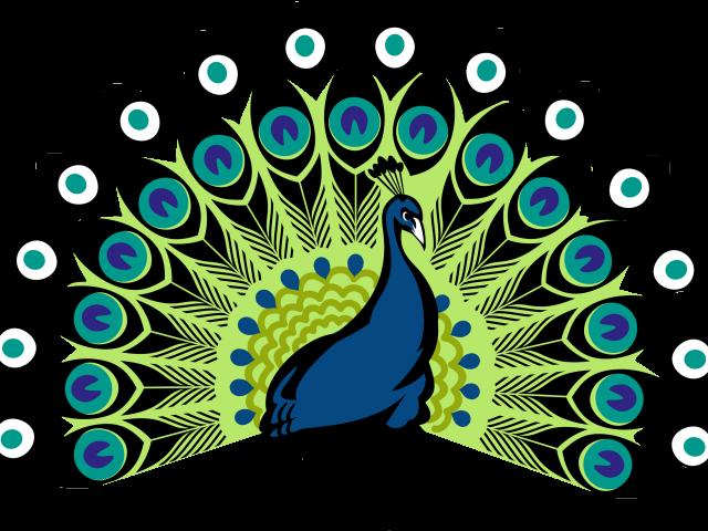 Turkeys clipart dancing. Peacock print out jokingart