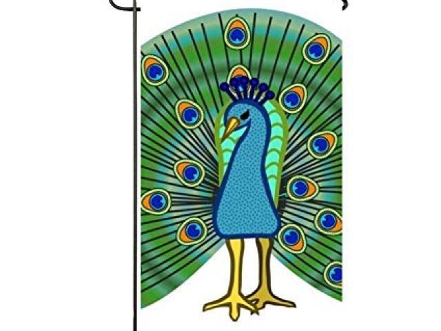 Peacock clipart cultural programme. Free download clip art