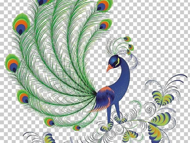 Free download clip art. Peacock clipart cultural programme