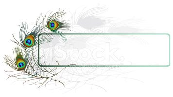 Peacock clipart frame. Feather stock vectors me