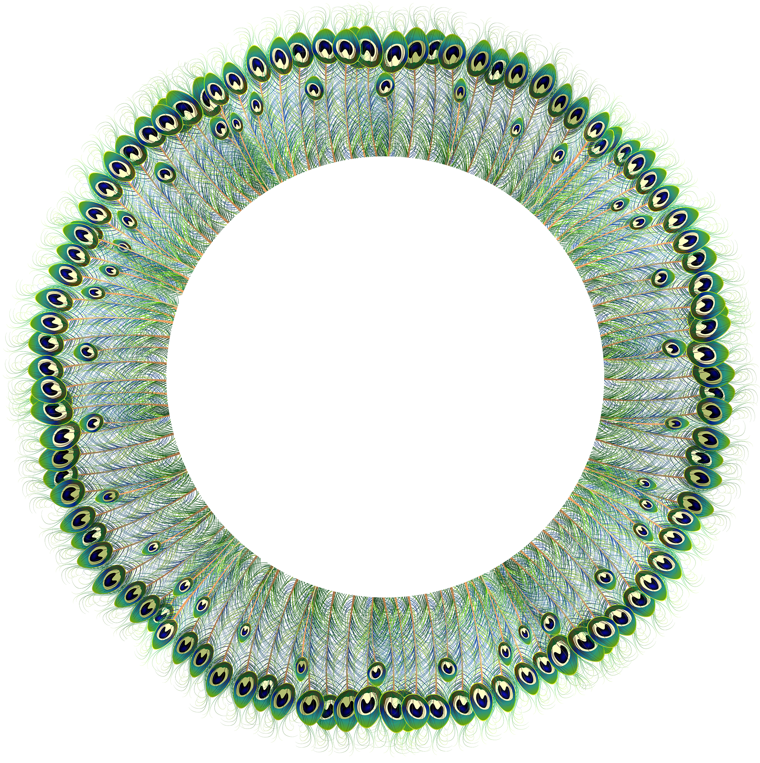 Peacock clipart frame. Round transparent png clip
