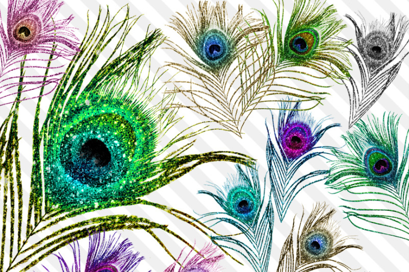 Feather by digital curio. Peacock clipart glitter