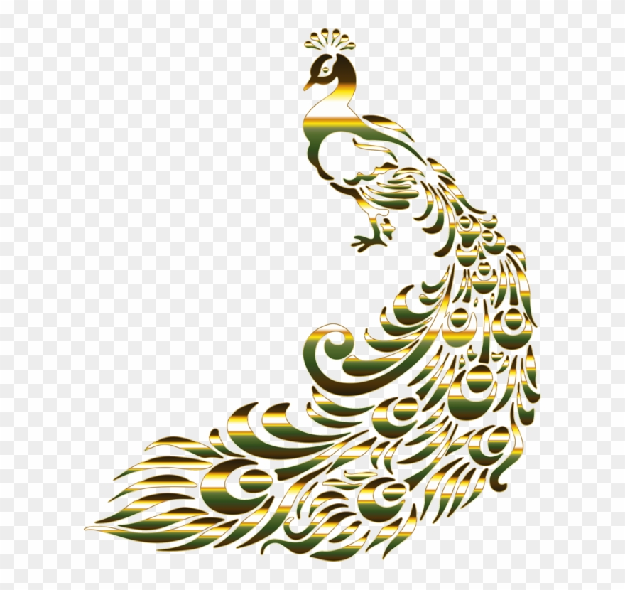 Peafowl bird feather drawing. Peacock clipart gold peacock