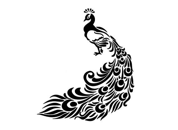 Peacock clipart line art. Svg bird dxf cricut