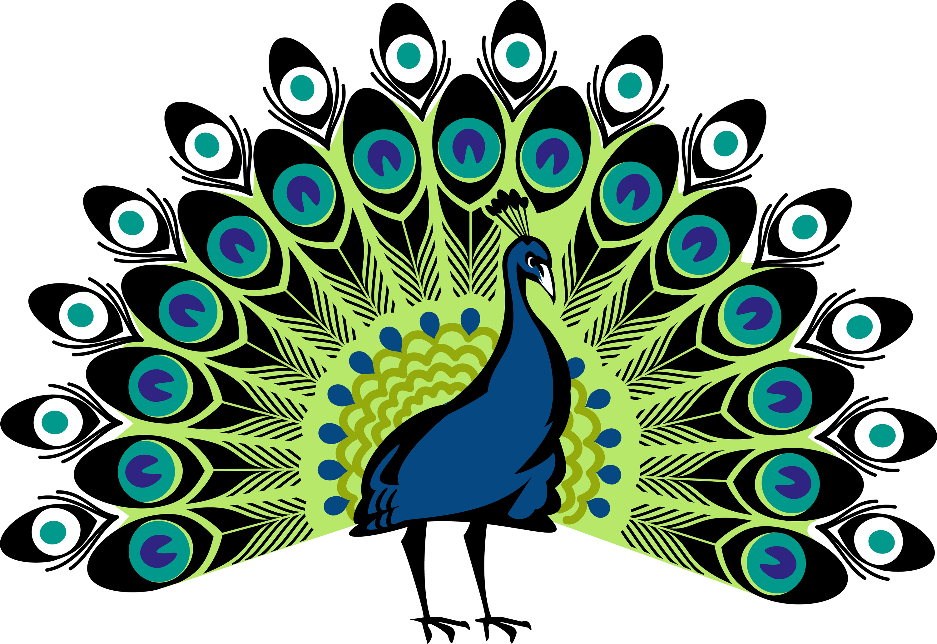 Peacock clipart line art. Png web icons download