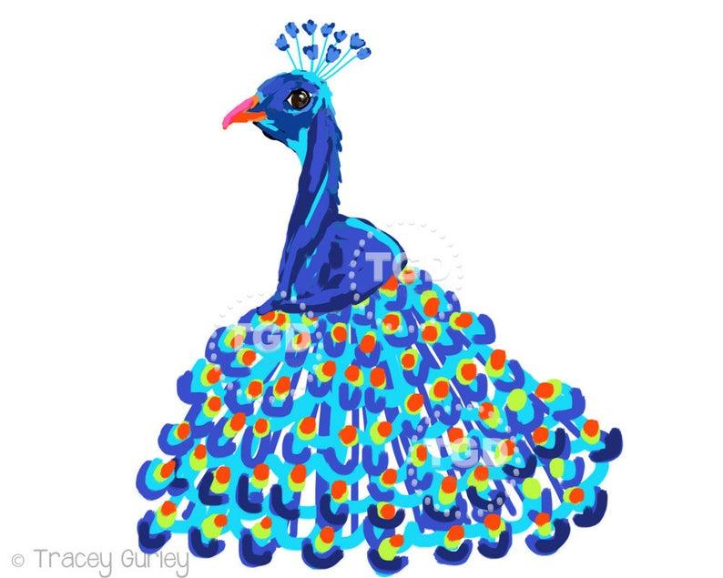 Art tropical bird feathers. Peacock clipart picock