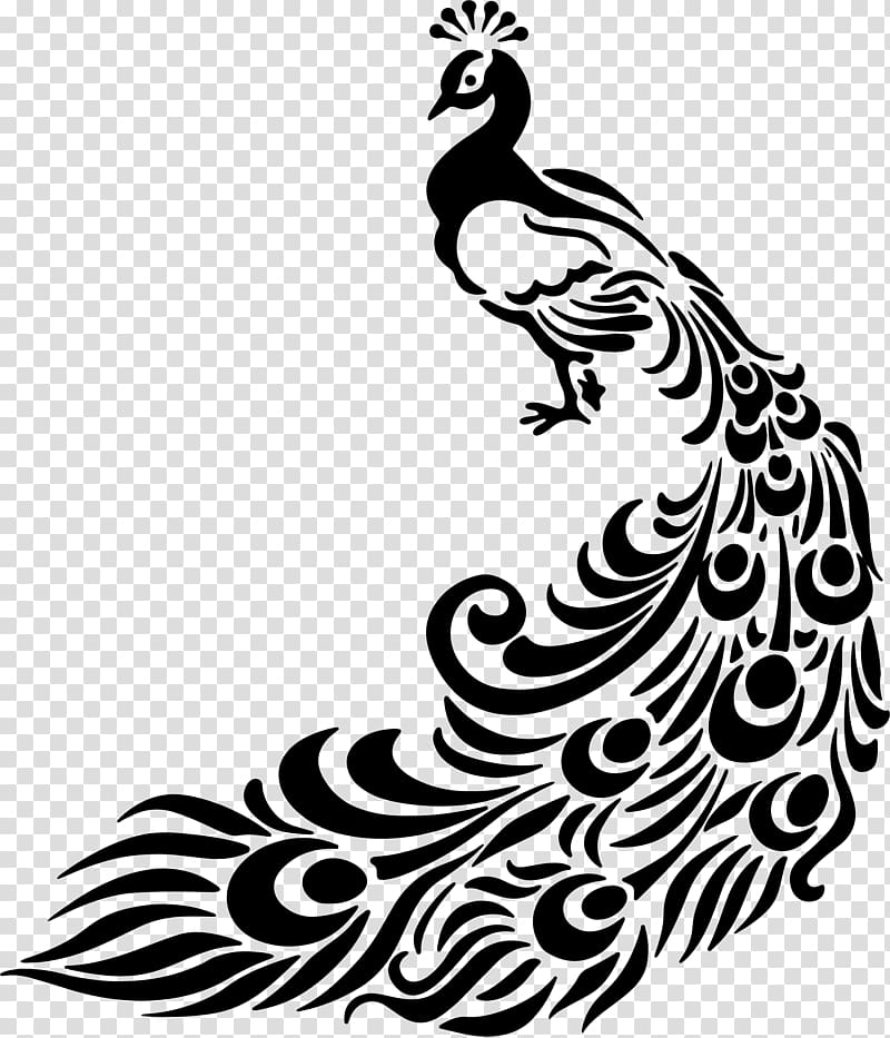 Line art peafowl drawing. Peacock clipart sketch